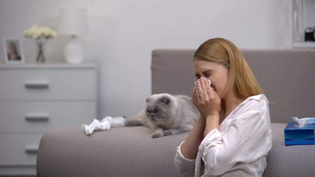 persona allergica